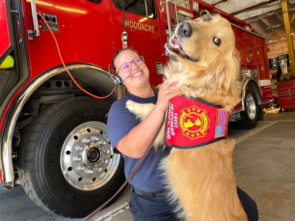 kerith,-marin's-celebrity-therapy-dog,-gears-up-for-fire-season