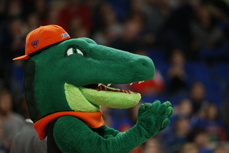 uf-mascots-are-not-celebrities-under-fla.-bar's-ad-rules